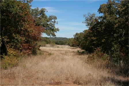 Sold Property | 00 W Hwy.180 Highway Mineral Wells, Texas 76067 11