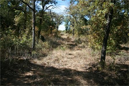 Sold Property | 00 W Hwy.180 Highway Mineral Wells, Texas 76067 21