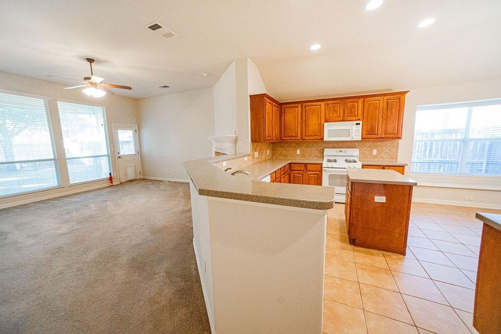 Sold Property   19408 Sunken Creek PASS Pflugerville, TX 78660 9