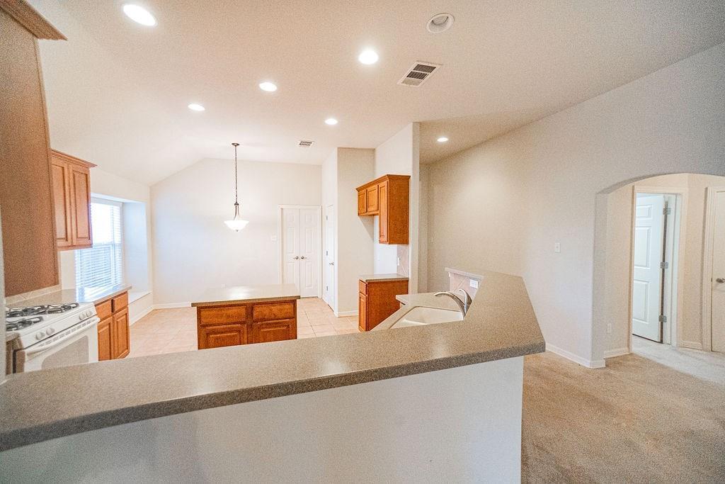 Sold Property   19408 Sunken Creek PASS Pflugerville, TX 78660 10