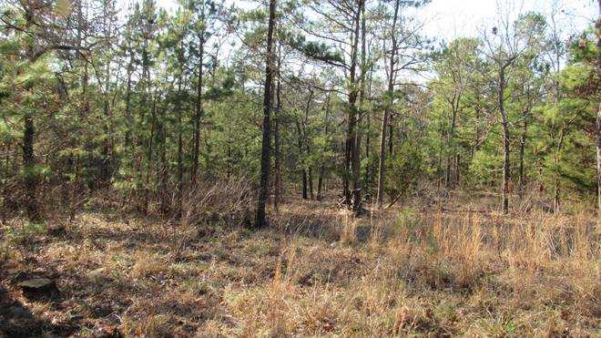 Pending | Willys Circle - Kiamich Wilderness Moyers, OK 74557 10