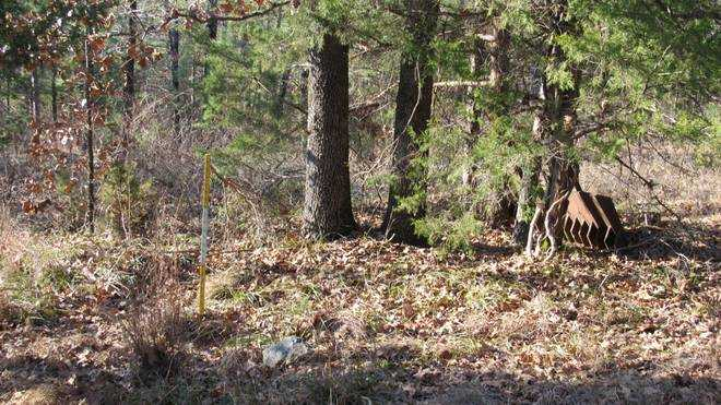 Pending | Willys Circle - Kiamich Wilderness Moyers, OK 74557 11