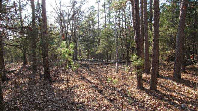 Pending | Willys Circle - Kiamich Wilderness Moyers, OK 74557 13