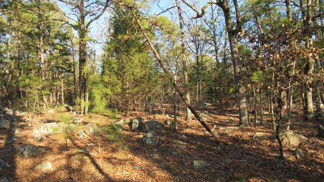 Pending | Willys Circle - Kiamich Wilderness Moyers, OK 74557 16