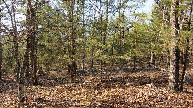 Pending | Willys Circle - Kiamich Wilderness Moyers, OK 74557 17