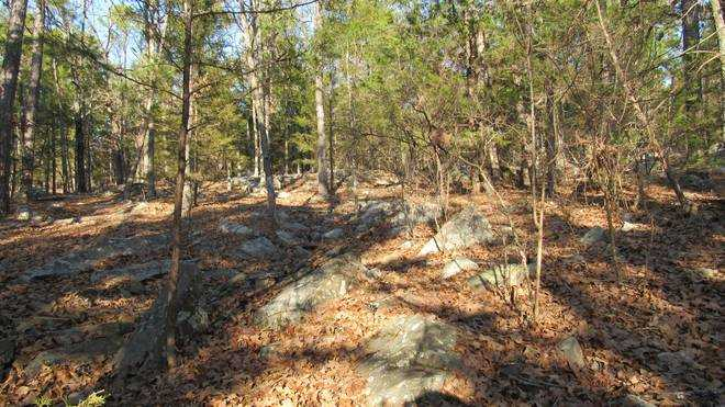 Pending | Willys Circle - Kiamich Wilderness Moyers, OK 74557 18