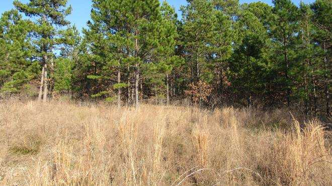 Pending | Willys Circle - Kiamich Wilderness Moyers, OK 74557 2