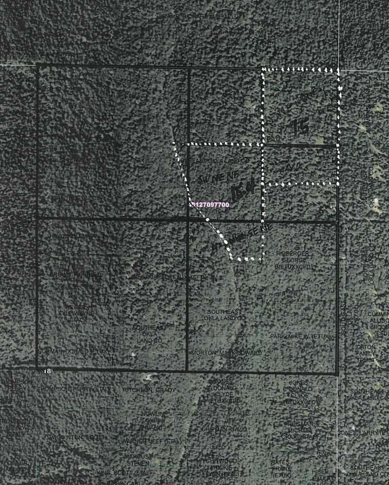 Pending | Willys Circle - Kiamich Wilderness Moyers, OK 74557 1