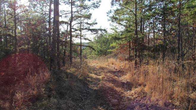 Pending | Willys Circle - Kiamich Wilderness Moyers, OK 74557 6