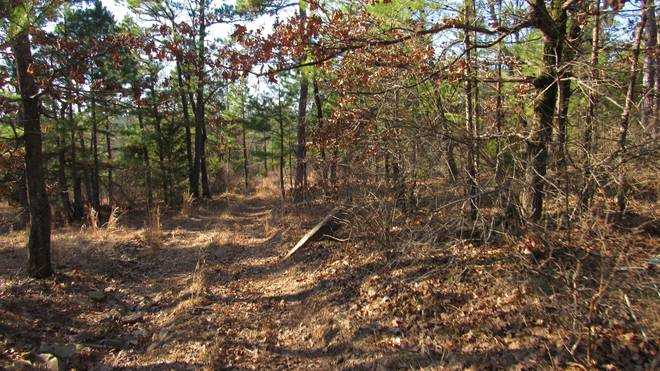 Pending | Willys Circle - Kiamich Wilderness Moyers, OK 74557 8