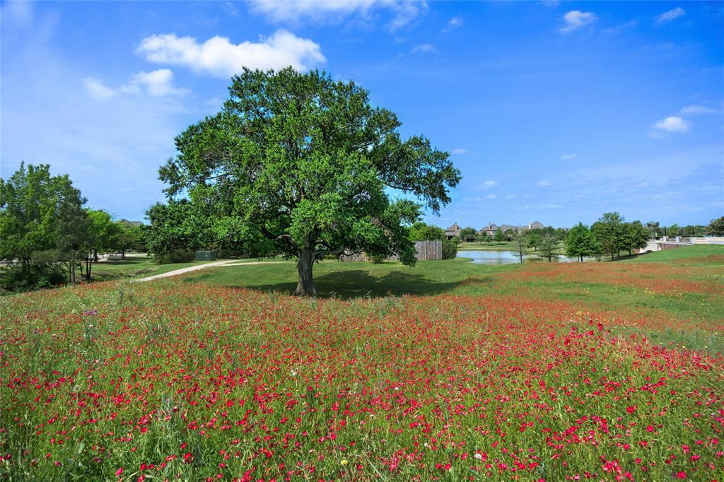 Off Market | 16739 Doubletree Ranch Drive Cypress, TX 77433 47