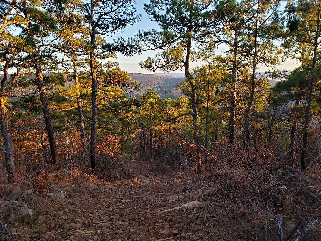 Active | BEAR CANYON RANCH - HWY 2 YANUSH, OK 74574 12