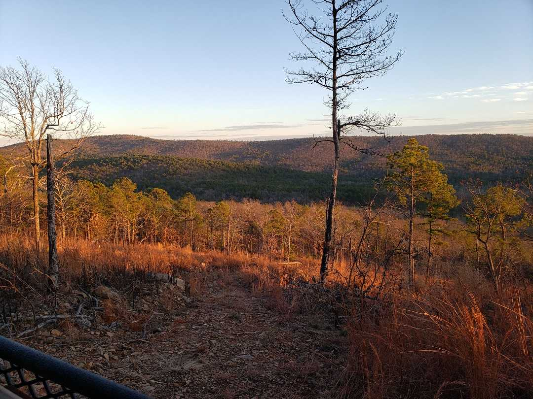 Active | BEAR CANYON RANCH - HWY 2 YANUSH, OK 74574 14