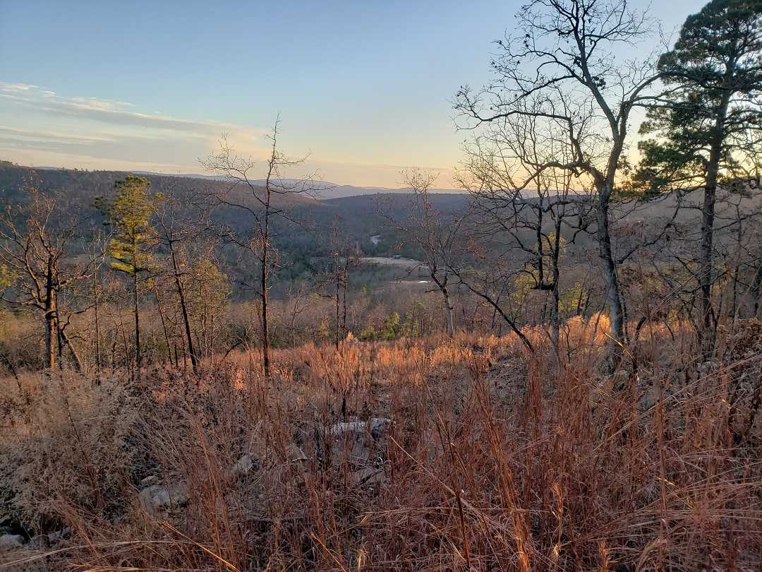 Active | BEAR CANYON RANCH - HWY 2 YANUSH, OK 74574 15