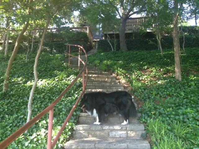 Sold Property | 2412 Cedar Crest Drive Granbury, Texas 76048 8