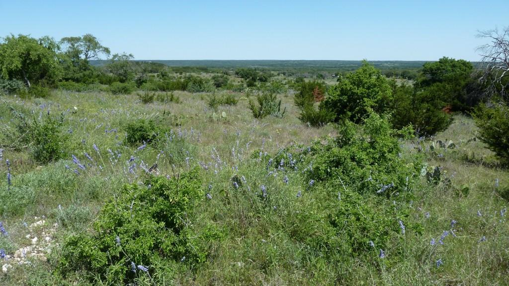 Sold Property | 4500 County Rd 108 Lampasas, TX 76550 10