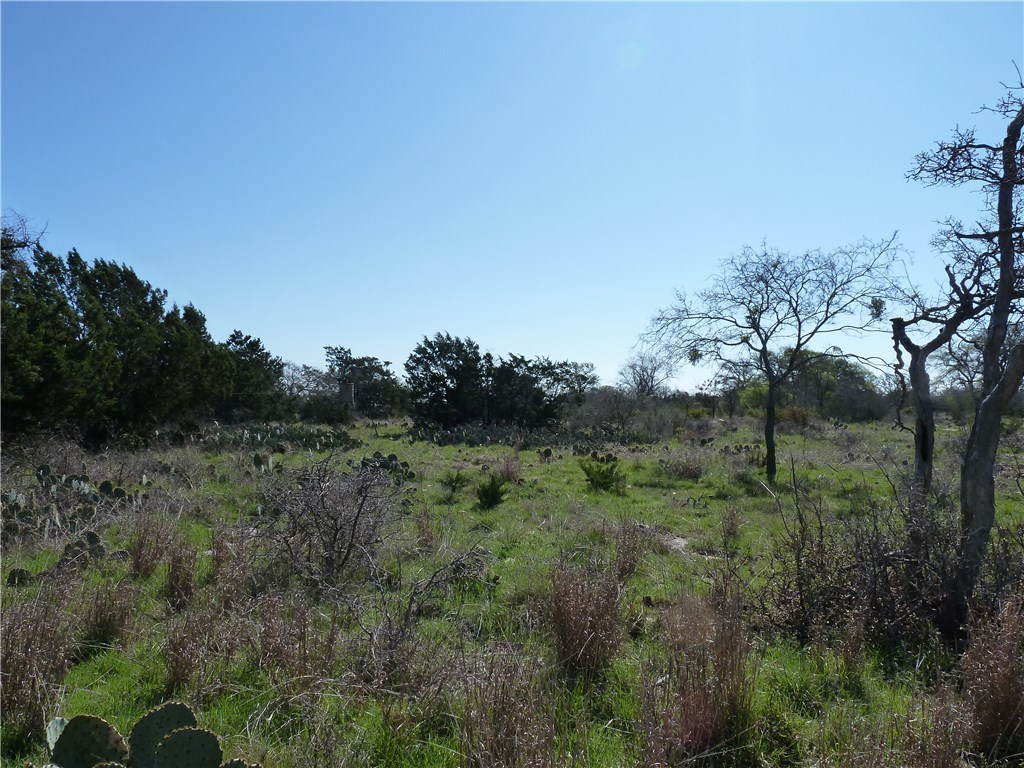 Sold Property | 4500 County Rd 108 Lampasas, TX 76550 13