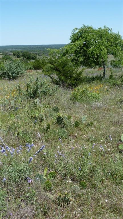 Sold Property | 4500 County Rd 108 Lampasas, TX 76550 16