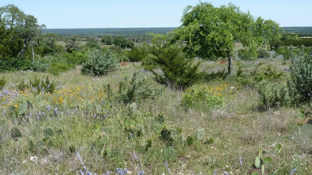 Sold Property | 4500 County Rd 108 Lampasas, TX 76550 17