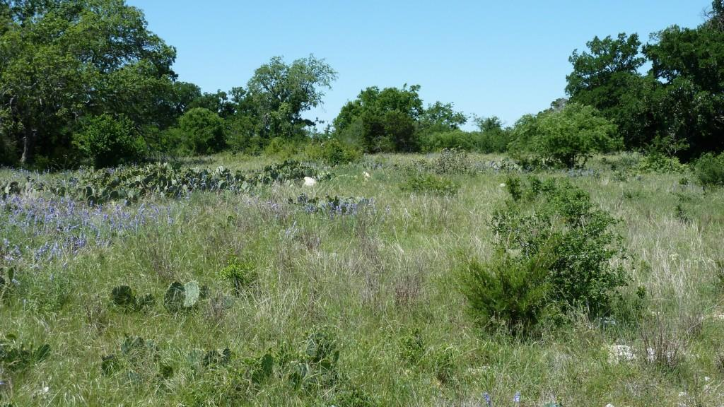 Sold Property | 4500 County Rd 108 Lampasas, TX 76550 18
