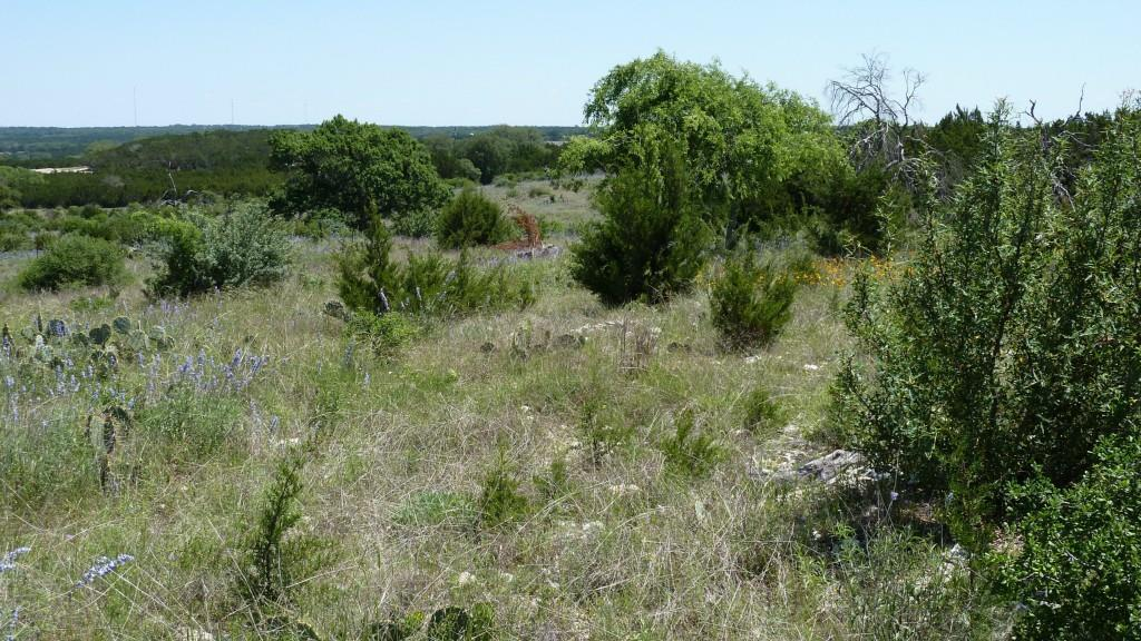 Sold Property | 4500 County Rd 108 Lampasas, TX 76550 19
