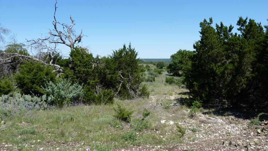 Sold Property | 4500 County Rd 108 Lampasas, TX 76550 2