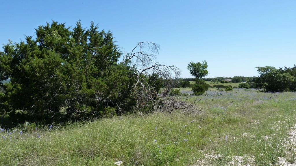 Sold Property | 4500 County Rd 108 Lampasas, TX 76550 32