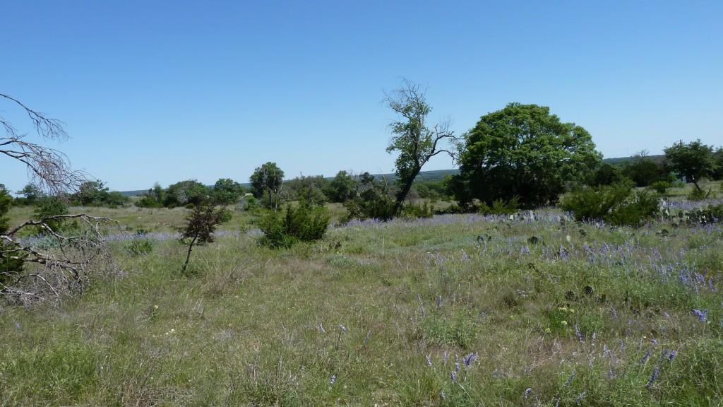 Sold Property | 4500 County Rd 108 Lampasas, TX 76550 34