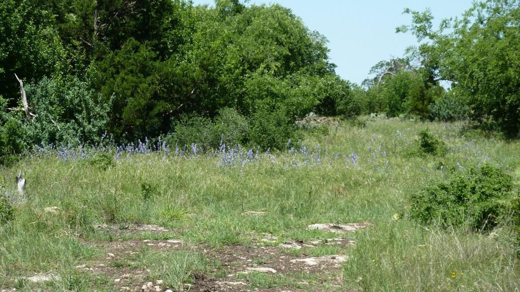 Sold Property | 4500 County Rd 108 Lampasas, TX 76550 9