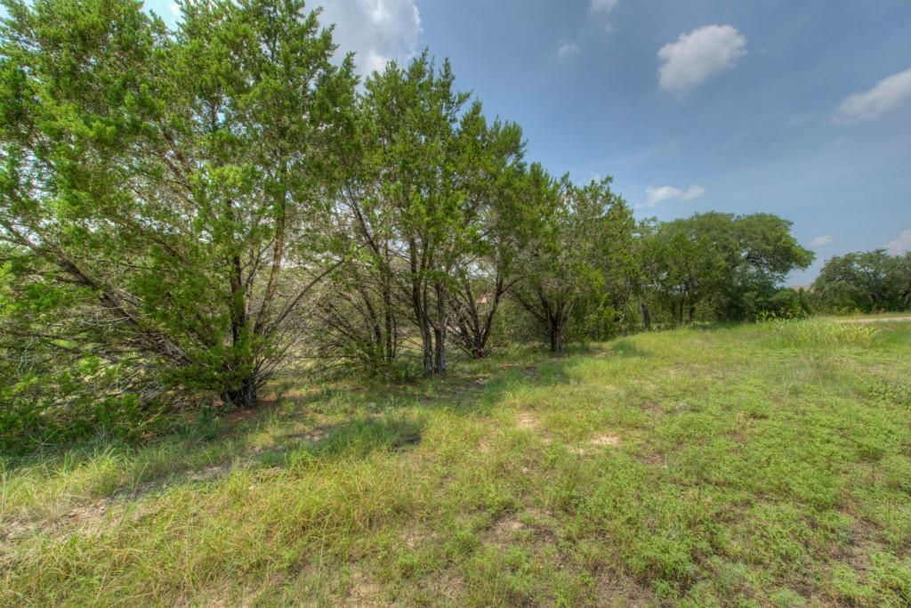 Sold Property | 101 Montagna CV Austin, TX 78734 8