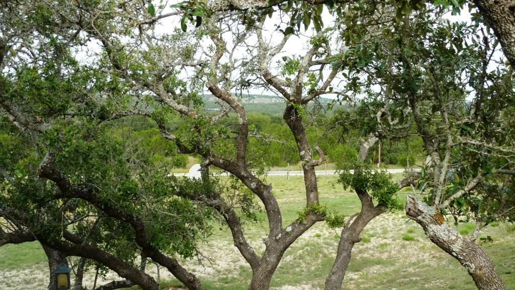 Sold Property | 601 Farrell Road Dripping Springs, TX 78620 21
