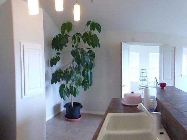 Sold Property | 15502 Enid Drive Austin, TX 78734 26