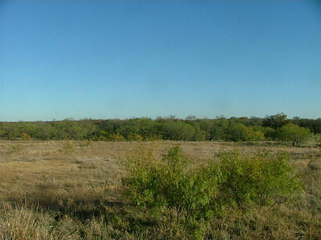 Sold Property | L 236 Vista Pointe Drive Chico, Texas 76431 0