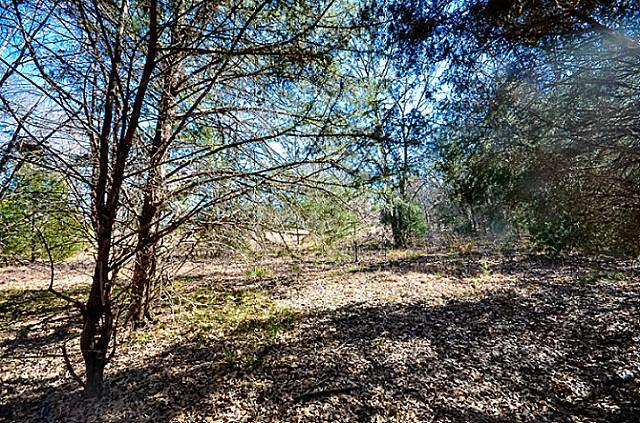 Sold Property | L 370 Polaris Drive Corsicana, Texas 75109 6