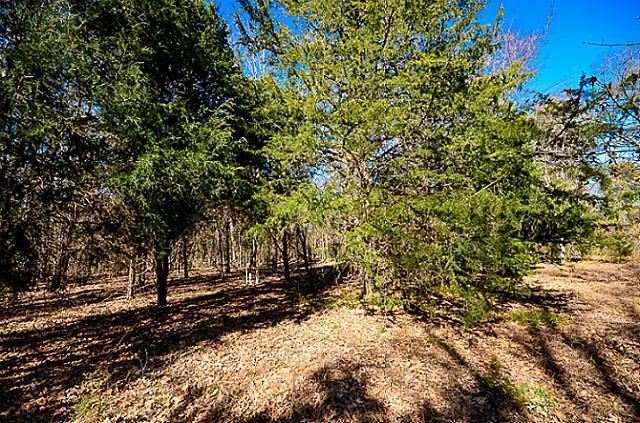 Sold Property | L 370 Polaris Drive Corsicana, Texas 75109 7