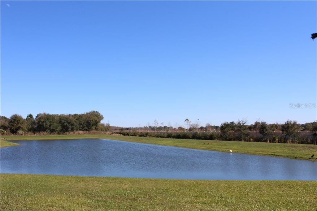 Sold Property | 3280 GENTLE DELL  COURT WESLEY CHAPEL, FL 33543 5