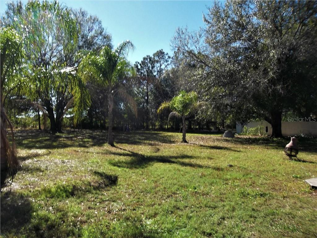 Sold Property | 32040 CROMWELL LANE WESLEY CHAPEL, FL 33543 13