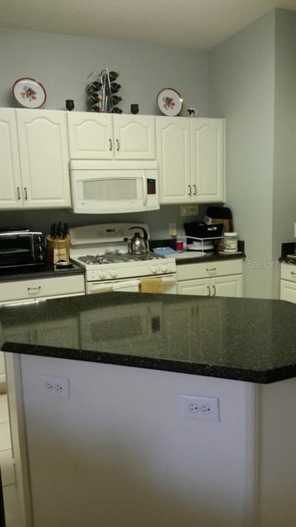 Sold Property | 20132 NOB OAK AVENUE TAMPA, FL 33647 8