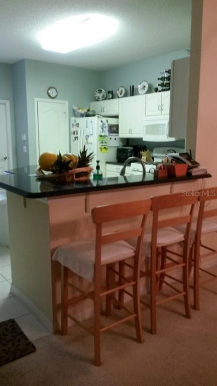 Sold Property | 20132 NOB OAK AVENUE TAMPA, FL 33647 9
