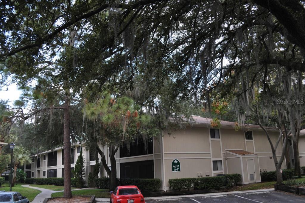 Sold Property   6010 LAKETREE LANE #K TEMPLE TERRACE, FL 33617 0