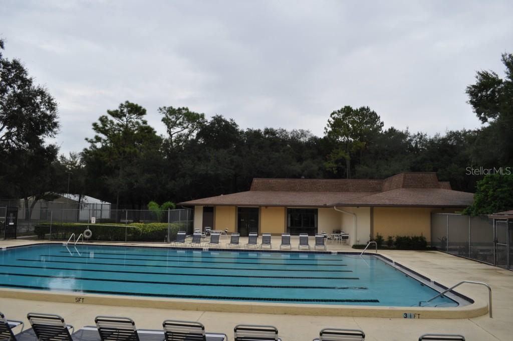 Sold Property   6010 LAKETREE LANE #K TEMPLE TERRACE, FL 33617 17