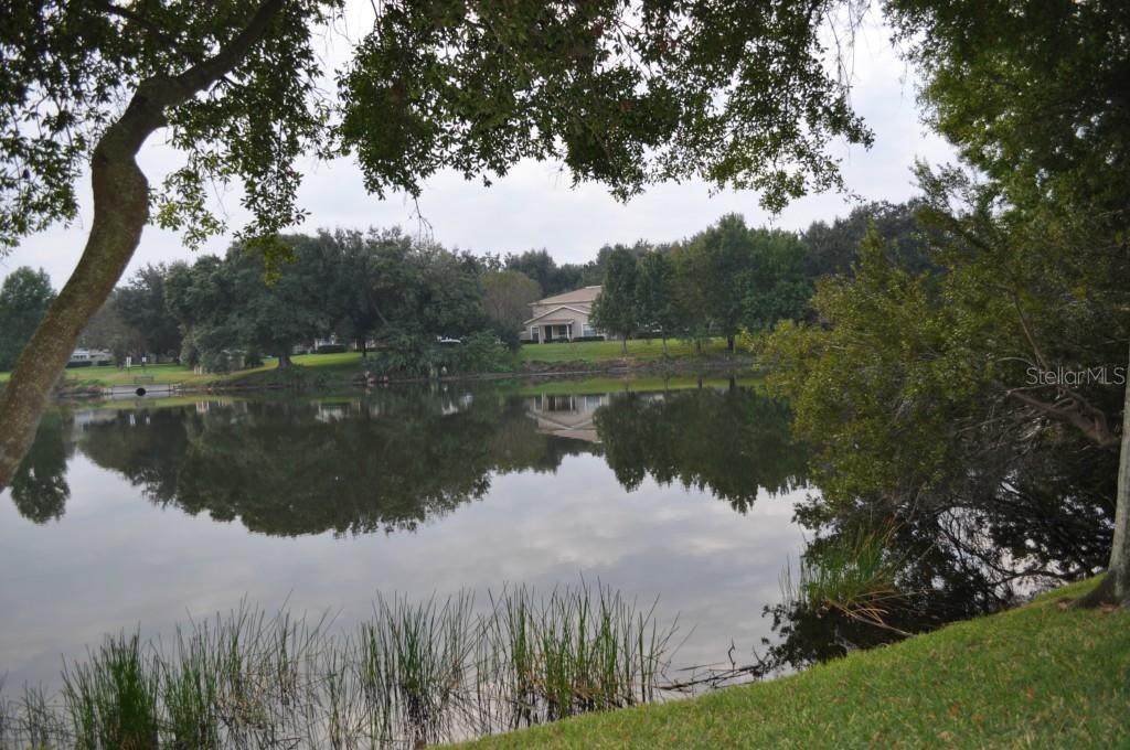 Sold Property | 6010 LAKETREE LANE #K TEMPLE TERRACE, FL 33617 19
