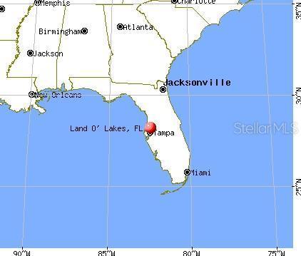 Leased   4015 MY LADY LANE #4 LAND O LAKES, FL 34638 3
