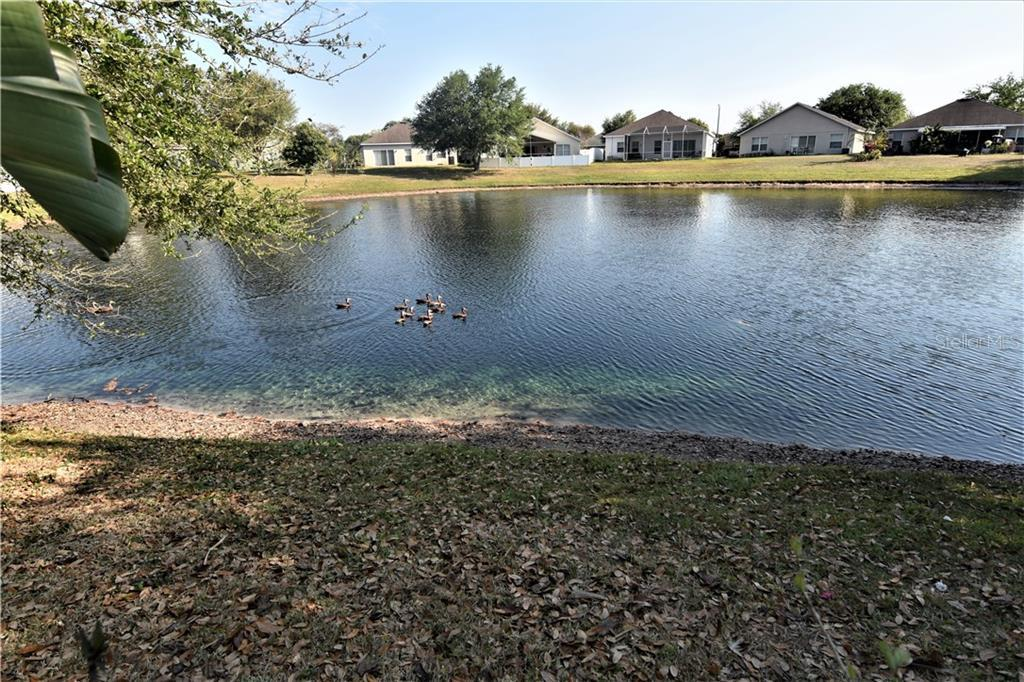 Sold Property | 9417 CYPRESS HARBOR DRIVE GIBSONTON, FL 33534 21