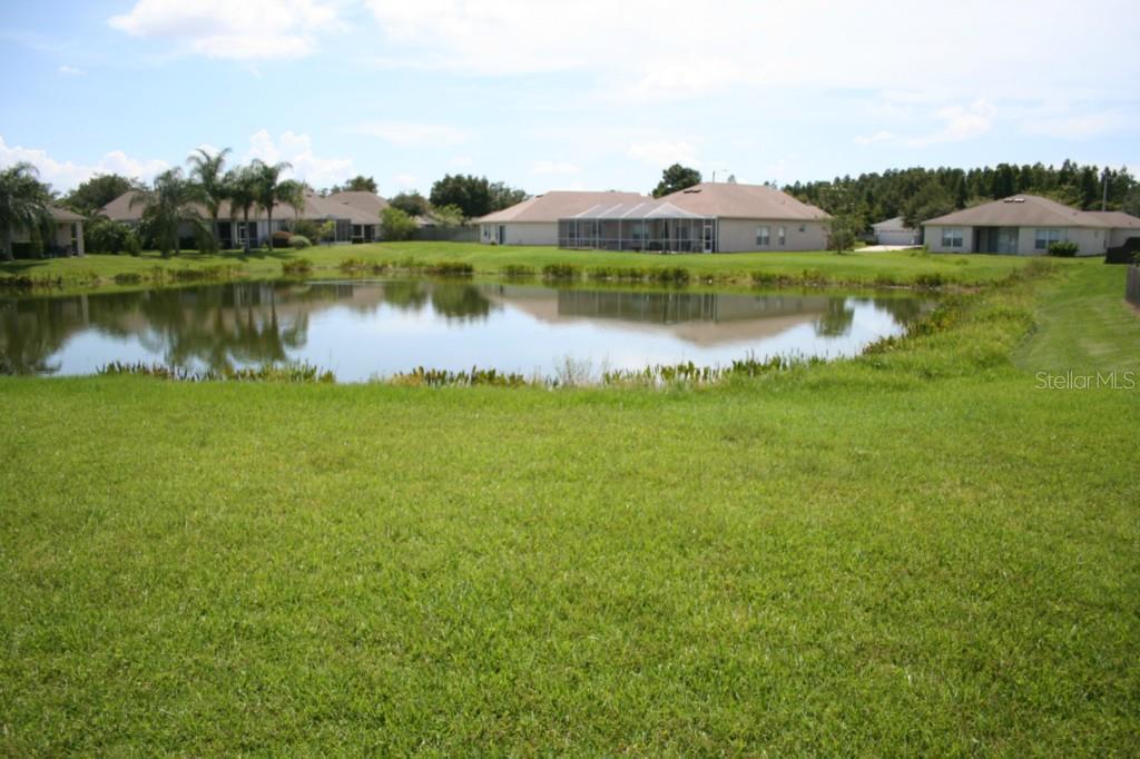 Sold Property | 1229 THACKERY WAY WESLEY CHAPEL, FL 33543 7