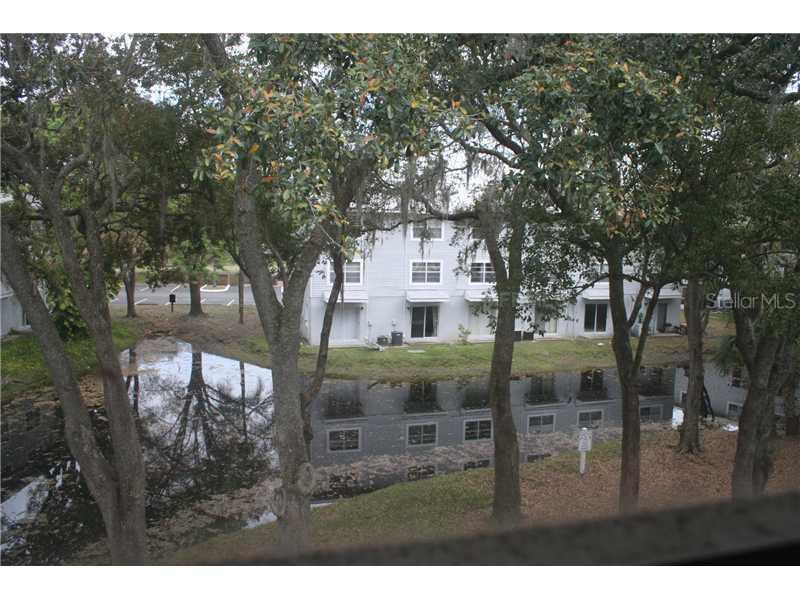 Sold Property   7171 E BANK DRIVE #33 TAMPA, FL 33617 6