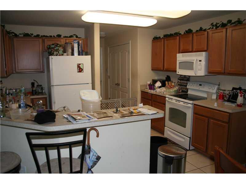 Sold Property   13552 FLADGATE MARK DRIVE RIVERVIEW, FL 33579 3