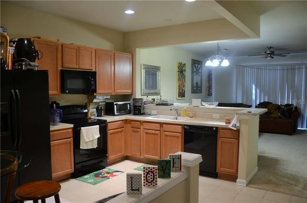Leased   10123 PINK PALMATA COURT RIVERVIEW, FL 33578 4