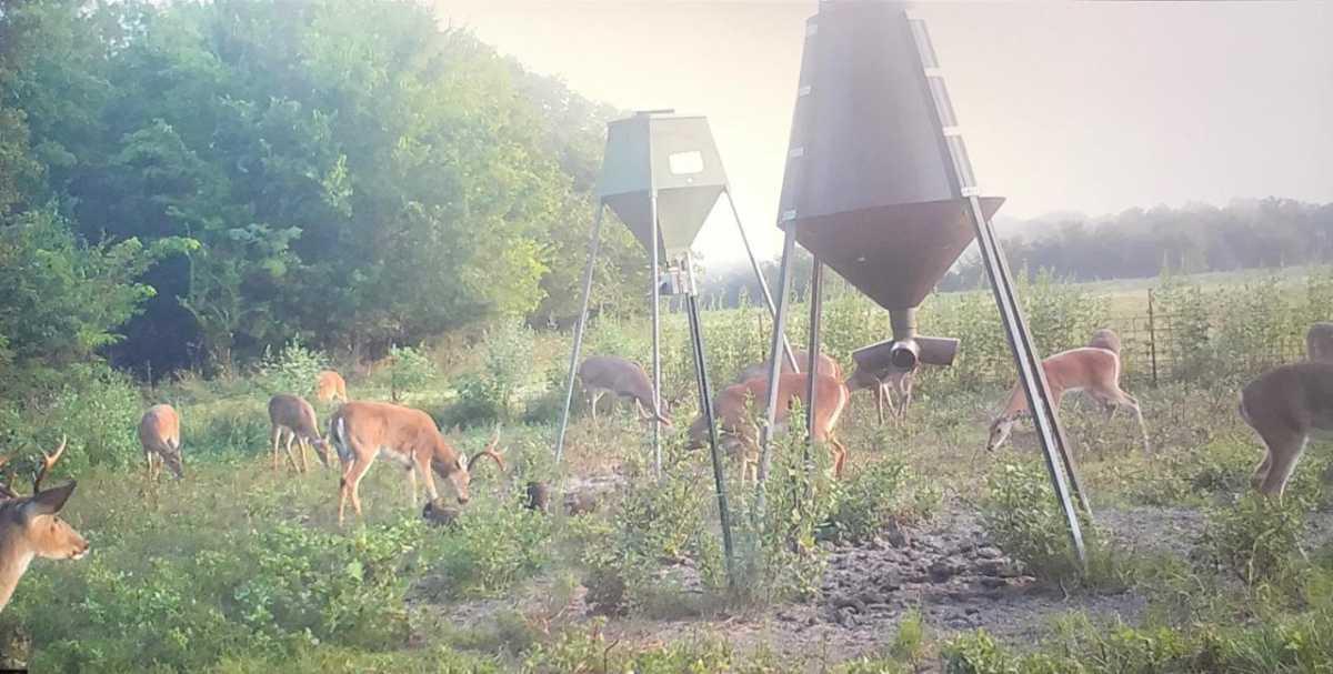 Active   Rut And Strut Hunting Ranch Bentley, OK 74525 8