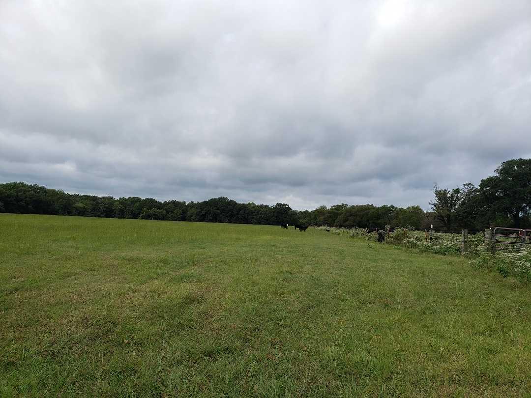 Active   Rut And Strut Hunting Ranch Bentley, OK 74525 43
